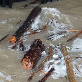 洪水水质净化