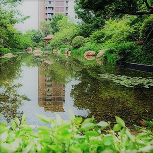 景观.JPG
